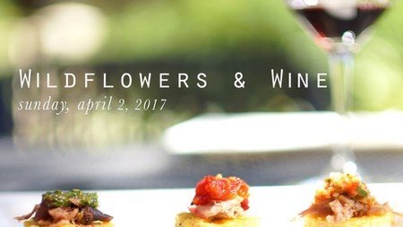 Join us at our next big event in Sutter Creek - Wildflowers & Wine!