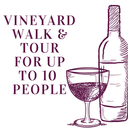 Vineyard Walk and Tour for up to 10 people